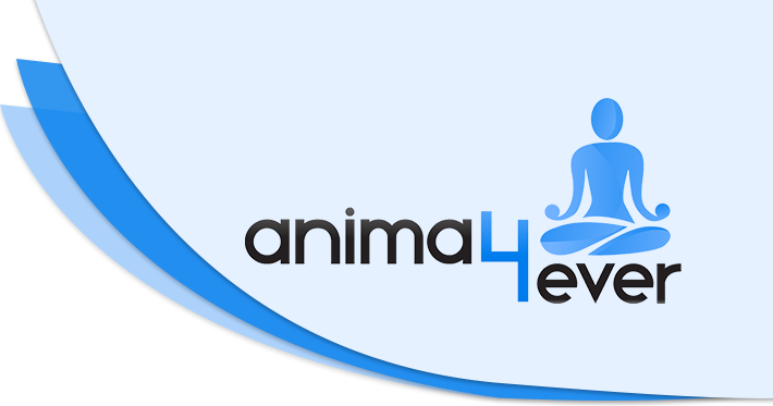 Anima4ever